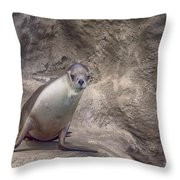 Center Of Attraction Throw Pillow