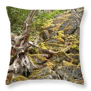 Cheakamus Rainforest Debris Throw Pillow