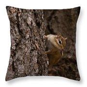 Cheeky Chipmunk Throw Pillow