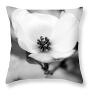 Dogwood Blossom Throw Pillow
