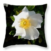Cherokee Rose Throw Pillow