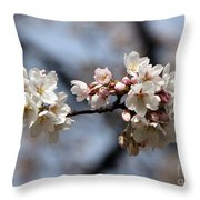 Cherry Blossom 3 Throw Pillow