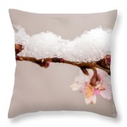 Cherryblossom With Snow Throw Pillow