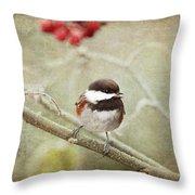 Chickadee In Winter Throw Pillow