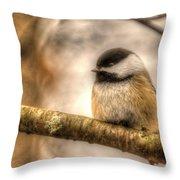 Chickadee Magic Throw Pillow
