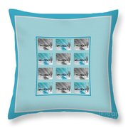 Chilly Winter Day Throw Pillow