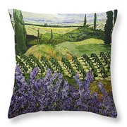 Chinaberry Hill Throw Pillow