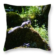 Chipmunk In The Sun Throw Pillow by Ben Upham III