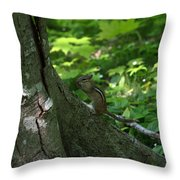 Chipmunk Throw Pillow