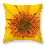 Chipmunk's Peredovik Sunflower Throw Pillow