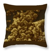 Chlamydia Trachomatis Throw Pillow