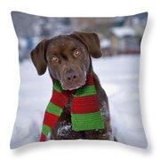 Chocolate Labrador Retriever Throw Pillow
