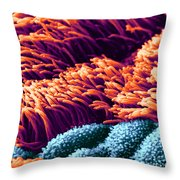 Cilia In Lung, Sem Throw Pillow