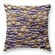 Ciliated Cells In Trachea, Sem Throw Pillow