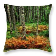 Cinnamon Ferns And Red Spruce Trees Throw Pillow