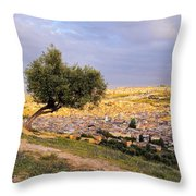 Cityscape Of Fes In Morocco Throw Pillow