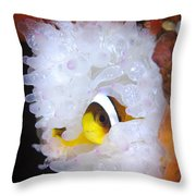 Clarks Anemonefish In White Anemone Throw Pillow