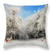 Clearing Skies Throw Pillow