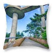 Clingmans Dome - Great Smoky Mountains National Park Throw Pillow