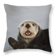 Close Up A Sea Otter In Prince William Throw Pillow