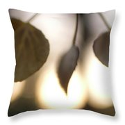 Close-up Of Aspen Leaves In Autumn Throw Pillow
