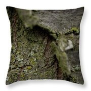 Closeup Of Bark Covered In Lichen Throw Pillow