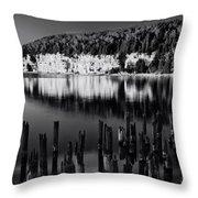 Coast 26 Throw Pillow