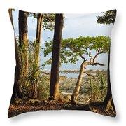 Coastal Rainforest Havelock Isl India Throw Pillow