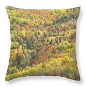 Colorful Autumn Forest In Mount Blue State Park Weld Maine Throw Pillow