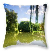 Colorful Autumn Summer Park Throw Pillow