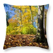 Colorful Fall Autumn Park Throw Pillow