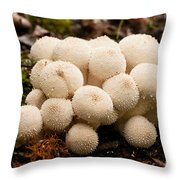 Common Puffball Mushrooms Lycoperdon Perlatum Throw Pillow