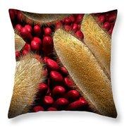 Conceptual Image Of Paramecium Throw Pillow by Stocktrek Images