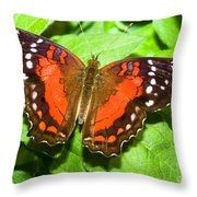 Coolie Butterfly Throw Pillow