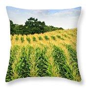 Corn Field Throw Pillow by Elena Elisseeva
