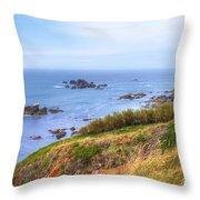 Cornwall - Lizard Throw Pillow