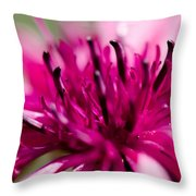 Corny Flower Throw Pillow