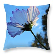 Cosmos To The Sky Throw Pillow