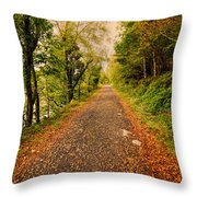 Country Lane Throw Pillow by Adrian Evans