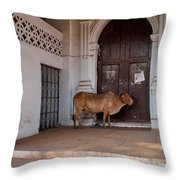 Cow At Church At Colva Throw Pillow