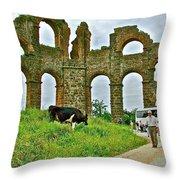 Cow By Second Century Aspendos Aqueduct-turkey Throw Pillow