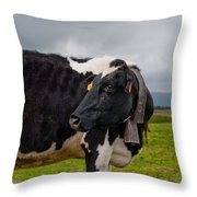 Cow Wearing Cowbell  Throw Pillow