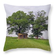 Cozy Shack  Throw Pillow