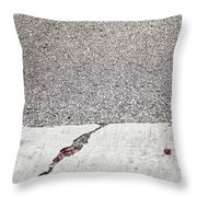 Cracked Throw Pillow by Margie Hurwich