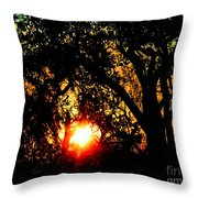 Creole Trail Sunset Throw Pillow