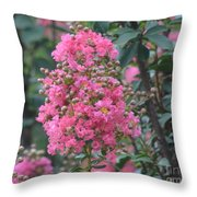 Crepe Myrtle Blossoms  Throw Pillow