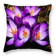 Crocus Flower Throw Pillow