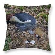 Crowned Crane And Eggs Throw Pillow