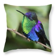 Crowned Woodnymph Hummingbird Male Throw Pillow