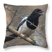 Crying Magpie Throw Pillow